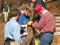 Volunteers help build a handrail at Hope Furnace during Make A Difference Day, 2005.